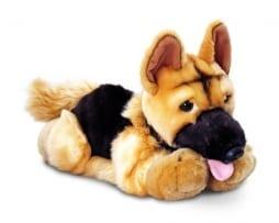 Alsatian Pup