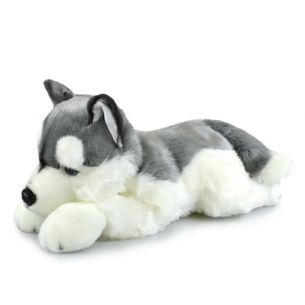 Adorable Large Husky Plushie 72cm